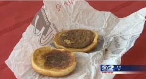 14-year old McDonalds burger...frightening!