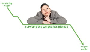Don't let a plateau stop your weight loss efforts - The Natural Way can help you to beat it!