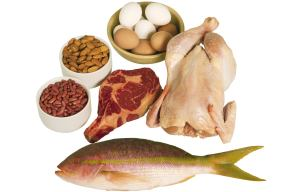 High protein foods are great for weight loss