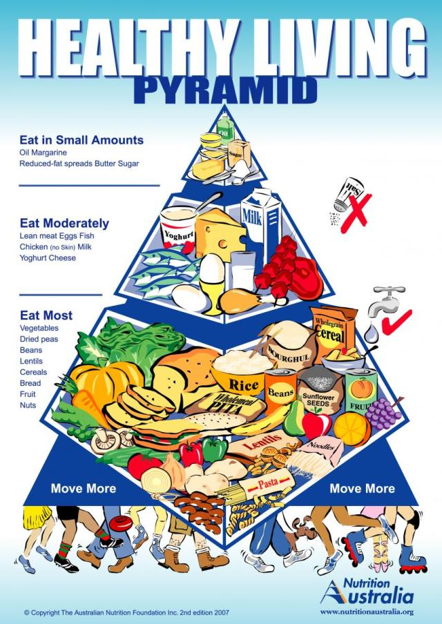 The Healthy Food Pyramid needs a definite nutritional  overhaul