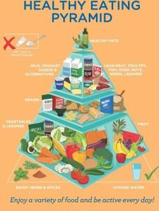 New food pyramid as of 18.05.15