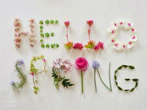 160826 hello spring